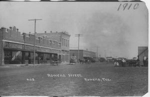Primary view of object titled '[Photograph of Rowena Street]'.