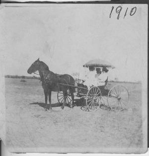 Primary view of object titled '[Photograph of Women in Horse-Drawn Buggy]'.