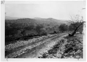 Primary view of object titled '[Dirt Road with a View of Hills and Trees]'.