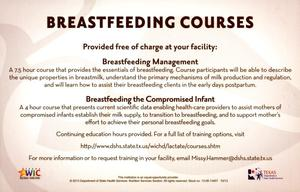Primary view of object titled 'Breastfeeding Courses'.