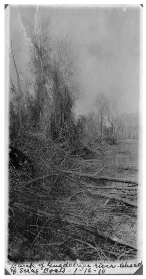 Primary view of object titled 'Bank of the Guadalupe River ahead of snag boats'.
