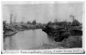Primary view of object titled 'Scene on the Guadalupe River three miles below Victoria'.