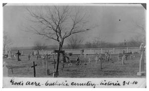 Primary view of object titled 'God's acre:  Catholic cemetery'.