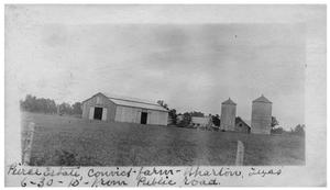 Primary view of object titled 'Pierce Estate, convict farm, Wharton, Texas [as seen from] public road'.