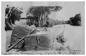 Primary view of object titled '[Bales of cotton on the banks of the] Guadalupe River [in] Tivoli'.