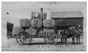 Primary view of object titled 'Load of cotton going to river landing for shipment--good roads here'.