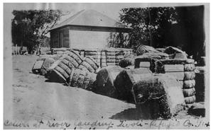 Primary view of object titled 'Cotton at [the] river landing, Tivoli'.