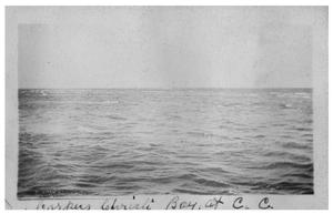 Primary view of object titled 'Corpus Christi Bay at Corpus Christi'.