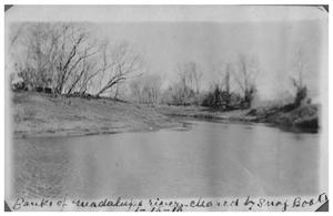 Primary view of object titled 'Banks of the Guadalupe River cleared by snag boats'.