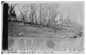 Primary view of object titled 'Bank of Guadalupe River, cleared by snag boat  numbers one and two'.