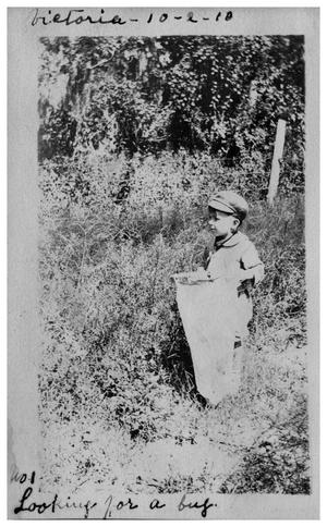 Primary view of object titled '[Boy with net] looking for a bug'.