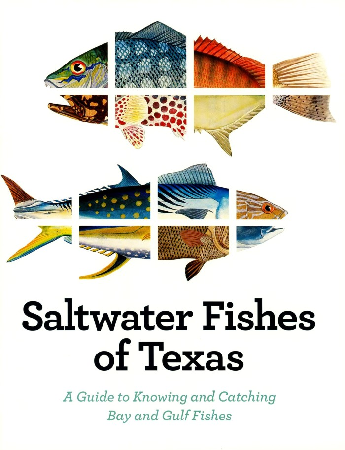 Saltwater Fishes Of Texas A Guide To Knowing And Catching Bay And Gulf Fishes The Portal To Texas History,Stargazing Lily Flowers