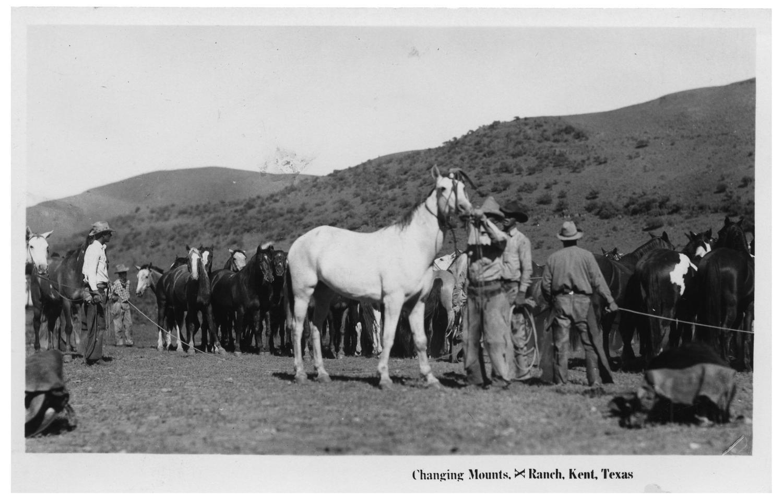 changing mounts  x ranch  kent  texas