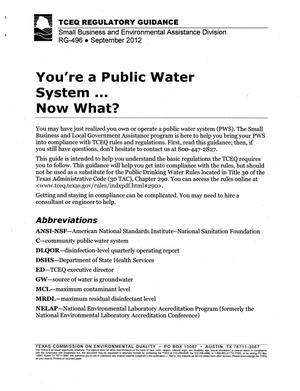 Primary view of object titled 'You're A Public Water System...Now What?'.