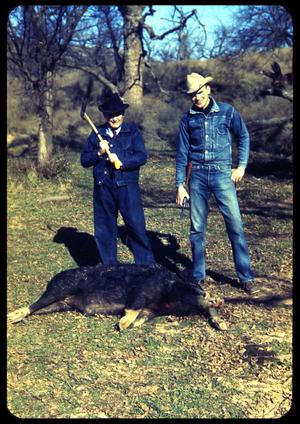 Primary view of object titled '[Two Men and a Dead Hog]'.