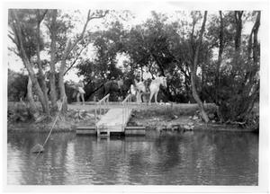 Primary view of object titled '[Cowboys at a Pond]'.