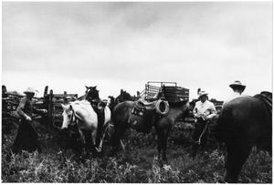 Primary view of object titled '[Cowboys and Horses Inside a Pen at the Matthews Ranch]'.
