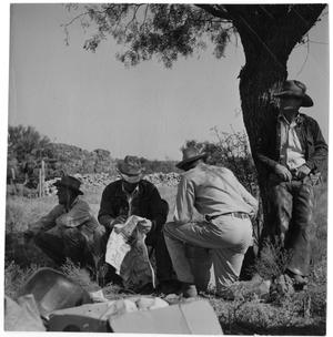 Primary view of object titled '[Cowboys under a Tree]'.