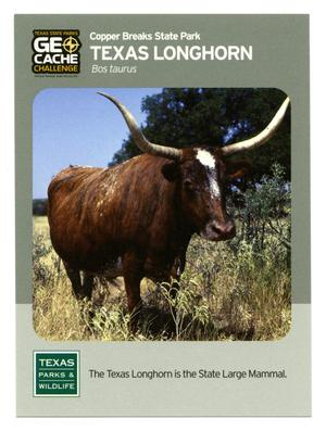 Primary view of object titled '[Trading Card: Texas Longhorn]'.