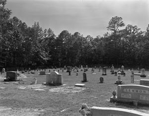 Primary view of object titled '[Old Founder's Cemetery]'.