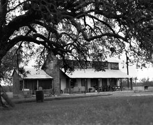 Primary view of object titled '[Phillip Eckert House, (North)]'.