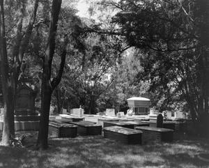 Primary view of object titled '[Thompson Cemetery]'.