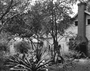 Primary view of object titled '[Davis Homestead, (Northwest b)]'.