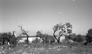 Primary view of object titled '[Fort McKavett, (Probably ruins of commissary, looking north)]'.