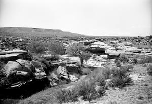 Primary view of object titled '[Rocky Dell, (Looking west at shelter)]'.