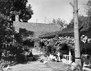 Primary view of object titled '[The Burger House]'.