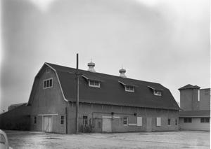 Primary view of object titled '[Texas Tech Dairy Barn, (Northeast oblique)]'.
