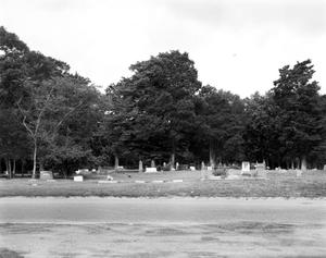 Primary view of object titled '[City Cemetery, (view West)]'.