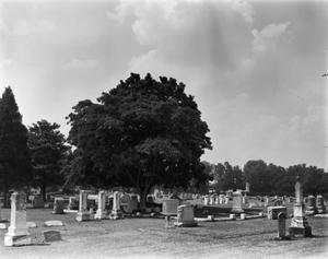 Primary view of object titled '[Oak Grove Cemetery]'.