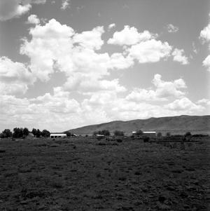 Primary view of object titled '[Camp Holland (Holland's Ranch)]'.