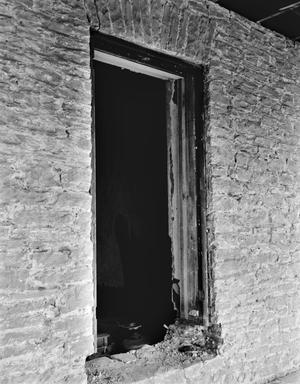 Primary view of object titled '[Carrington-Covert House, (South window detail (Room 214,212,213))]'.