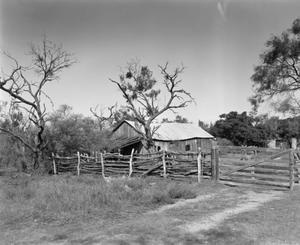 Primary view of object titled '[William Kothmann Fence, (North)]'.