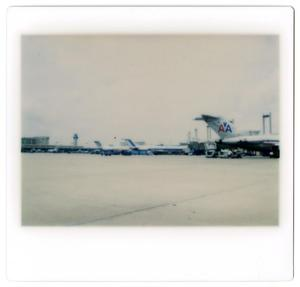 Primary view of object titled '[Dallas/Fort Worth Airport : American Airlines Aircraft]'.