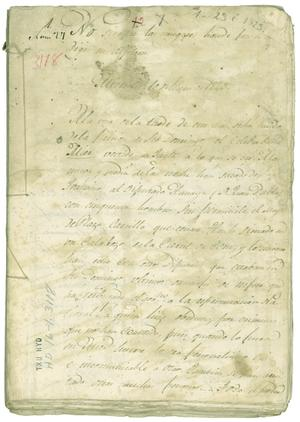 Primary view of object titled 'Section of Diary of Carlos Maria Bustamente'.