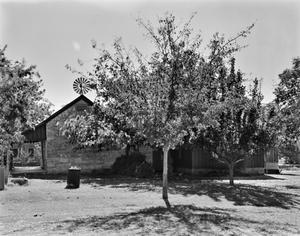 Primary view of object titled '[Adrian Edwards Conn House]'.
