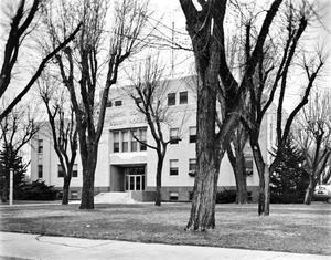 Primary view of object titled '[Carson County Courthouse]'.