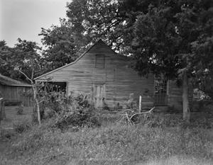 Primary view of object titled '[Willrich House, (Northeast elevation)]'.