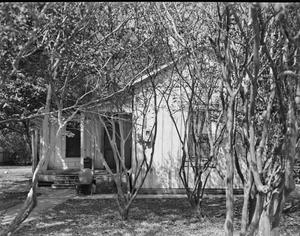Primary view of object titled '[Rosenaur Residence]'.