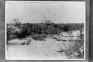 Primary view of object titled '[Saffold Dam]'.
