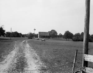 Primary view of object titled '[Stoerner Farm, (View from West)]'.