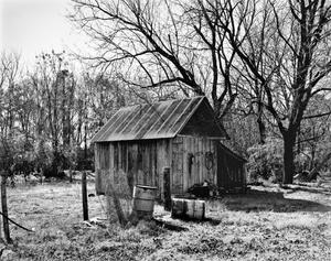Primary view of object titled '[Drummond-Rogers-Perkins House, (Shed, Northeast oblique)]'.