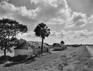 Primary view of object titled '[Bulay Plantation, (Overall complex, looking Northeast)]'.