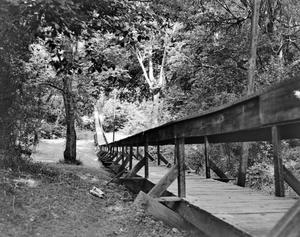 Primary view of object titled '[Rusk Footbridge]'.