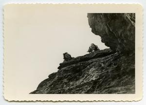 Primary view of object titled '[Photograph of Ginny Hoyt and Linda Aten near Lake Abilene]'.