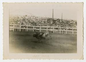 Primary view of object titled '[A Bull Rider Flies From His Bull]'.