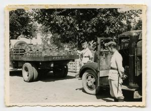 Primary view of object titled '[Soldiers Standing Next to Trucks]'.
